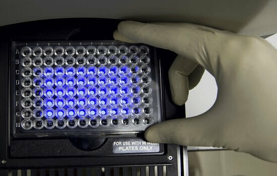 Scientist-put-the-plate-into-pcr-machine